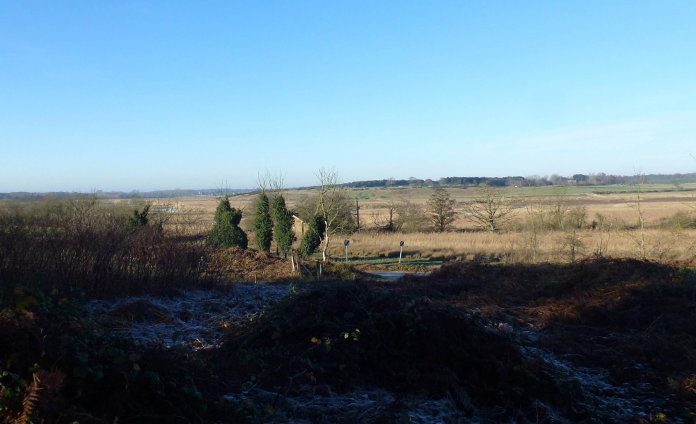 Over the marshes at Blythburgh